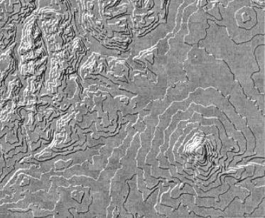 tanaka illuminated contours